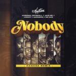 Nobody Canada Remix artwork