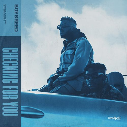 boybreed – checking for you 1 1